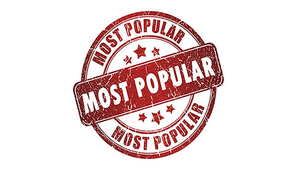 What Was Popular in 2019?