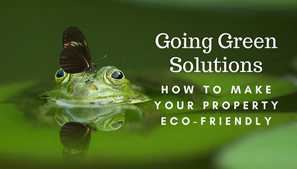 Going Green Solutions- How to Make Your Property Eco-Friendly